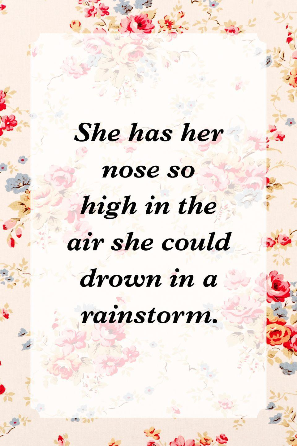 """<p>""""She has her nose so high in the air she could drown in a rainstorm.""""</p>"""