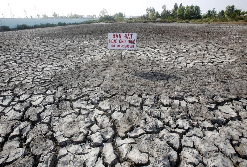 """A sign which reads """"Land for sale or for lease"""" is seen placed on a drought-affected rice field in Bac Lieu province, in the Mekong Delta, Vietnam"""