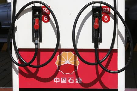 File photo of PetroChina's logo at a gas station in Beijing