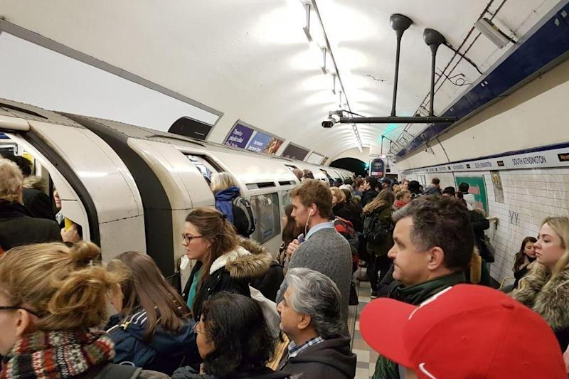 Commuters wait to board trains on the Piccadilly line (@rhsteoh)
