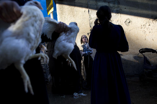 <p>Ultra-Orthodox Jews hold chickens during the Kaparot ritual in Bnei Brak, Israel, Thursday, Sept. 28, 2017. Observant Jews believe the ritual transfers one's sins from the past year into the chicken, and is performed before the Day of Atonement, Yom Kippur, the holiest day in the Jewish year which starts at sundown Friday. (Photo: Oded Balilty/AP) </p>