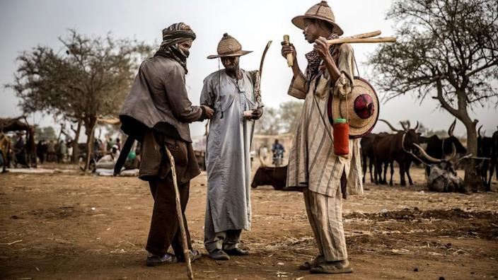 Water scarcity has made it more difficult for Fulani pastoralists to graze their cattle