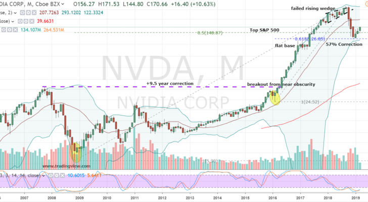 NVDA Stock Monthly Chart
