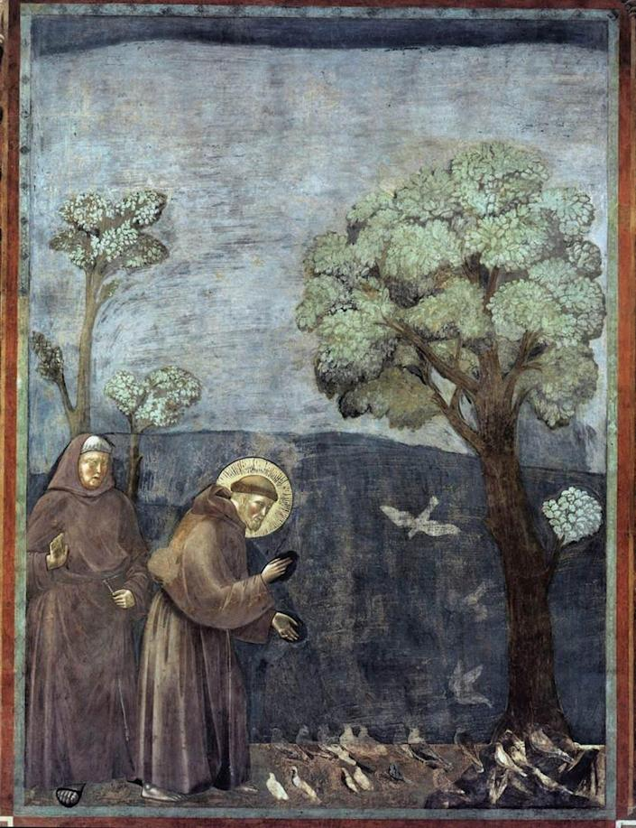 A fresco depicts St. Francis preaching to a group of birds under a tree, while another monk looks on.