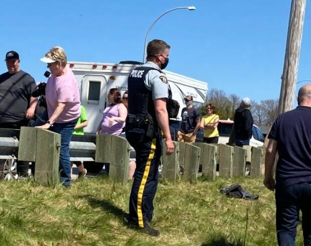 RCMP in Mount Stewart were asking whale watchers to spread out on the weekend. (Georgia Potter Fraser - image credit)