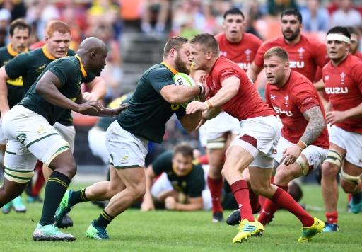 South Africa head coach Rassie Erasmus was disappointed to see his team lose against Wales at the death in what was the former Munster boss' first game in charge of the Springboks