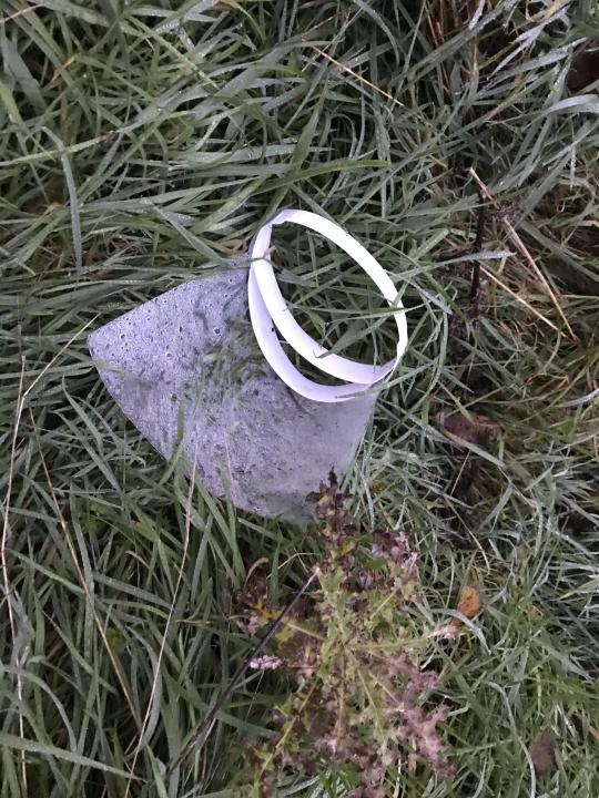 A PPE visor discarded near a beach in Yorkshire (Ana Cowie /Yorkshire Wildlife Trust/PA)