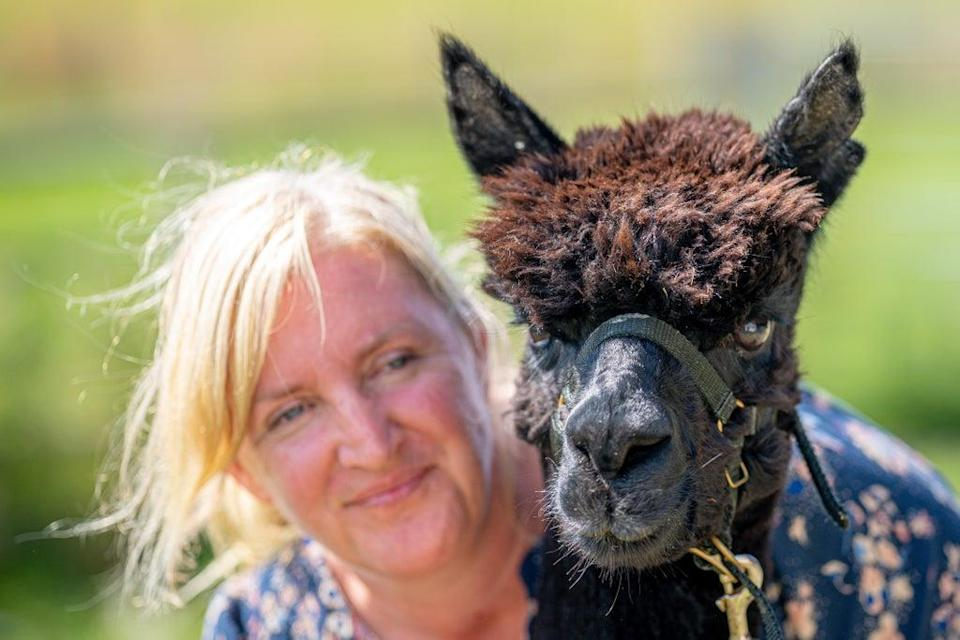 Geronimo the alpaca and his owner Helen Macdonald (Ben Birchall/PA) (PA Wire)