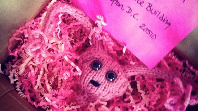 Activists to Congressmen: If We Knit You a Uterus, Will You Stay Out of Ours?