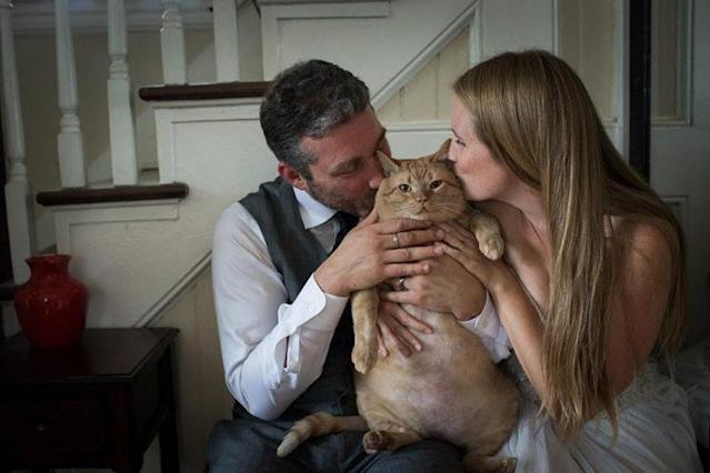 A couple includes their recently adopted 35-pound cat in wedding photos. (Photo: www.kristiodomfineart.com)
