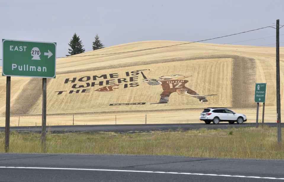 Cars pass a giant Washington State University mural covering a wheat field Thursday, Aug. 13, 2020, near Pullman, Wash. The athletes weren't the only ones impacted when Washington State's fall football season was canceled by the coronavirus pandemic. Merchants in tiny Pullman who depend on big football crowds say they are losing a major chunk of their annual income. (Tyler Tjomsland/The Spokesman-Review via AP)