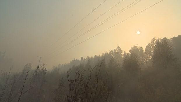 The Saskatchewan Public Safety Agency is advising communities in the Hudson Bay area of heavy wildfire smoke. (Don Somers/CBC - image credit)
