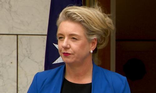 Mounting calls for Bridget McKenzie to resign over 'extraordinary' grant allocation. Anthony Albanese says her position is 'untenable' and Zali Steggall and Pauline Hanson have echoed calls for minister to step down