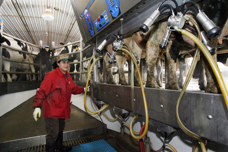 Minnesota dairy farms affected by US-Canada trade dispute