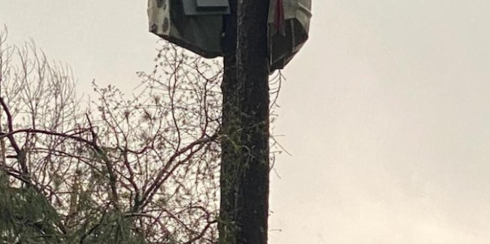 Authorities snap photo of a boat wrapped around a tree following Alabama storms
