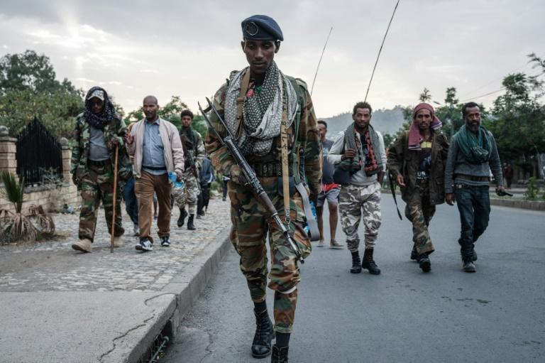 """The Tigray Defence Force has vowed to drive its """"enemies"""" out of the region"""
