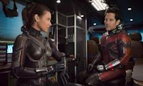 <p>Peyton Reed's <i>Ant-Man</i> sequel is a welcome palate-cleanser after the seismic events of <i>Avengers: Infinity War</i>, and is fun, frothy, but ultimately remains a minor entry in the Marvel Studios canon. </p>