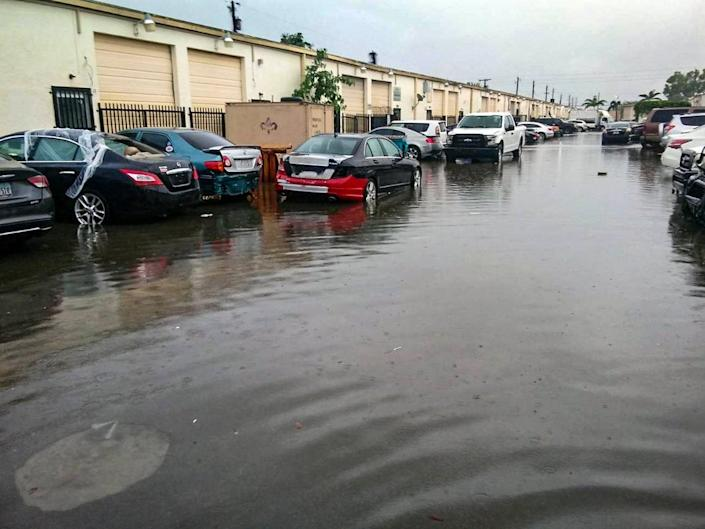 """Flooding is a major problem along 141st Street. """"If one car drives fast through here when there's standing water you get a tsunami in your shop,"""" says Brandon Michaels of B&P Auto."""