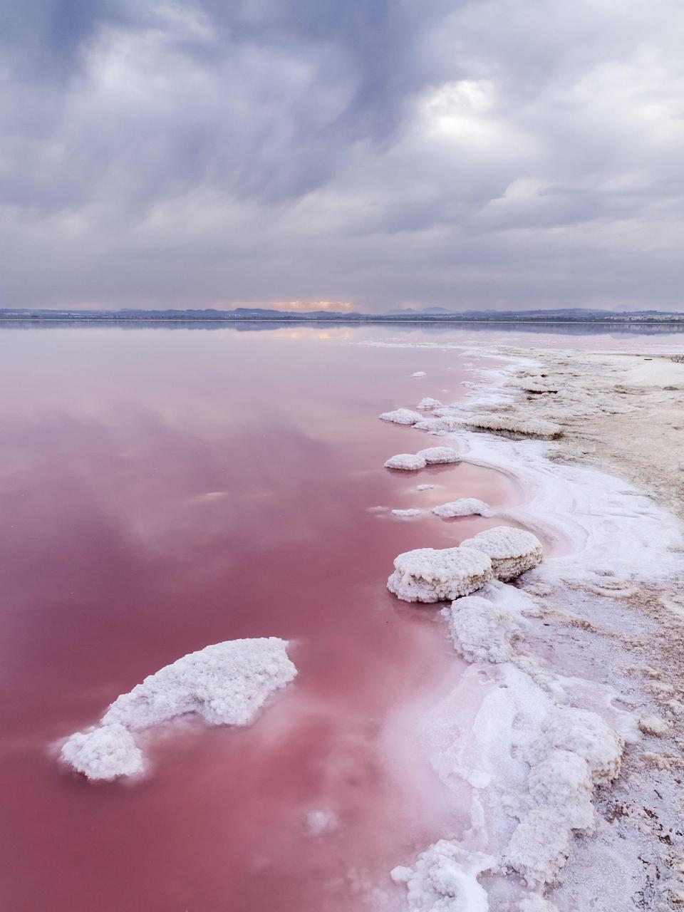 <p>Laguna Salada de Torrevieja is a natural phenomenon, where the water looks pink due to a type of special algae. </p>