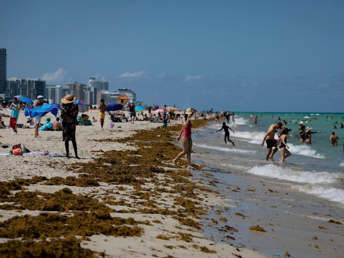 People gather on the beach in Miami, Florida: (2020 Getty Images)
