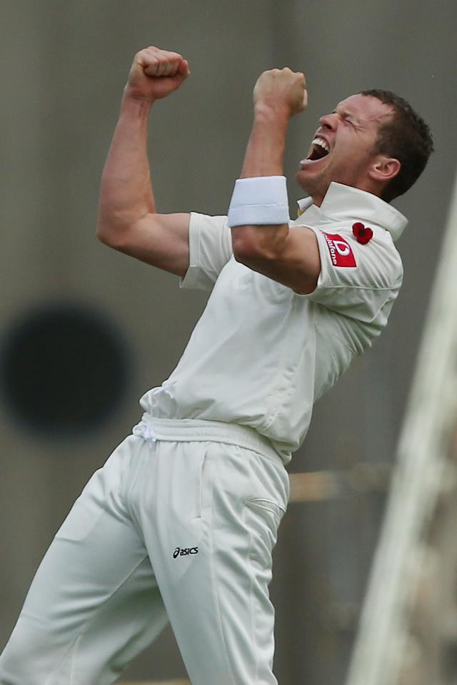 BRISBANE, AUSTRALIA - NOVEMBER 11:  Peter Siddle of Australia celebrates the wicket of Hashim Amla of South Africa during day three of the First Test match between Australia and South Africa at The Gabba on November 11, 2012 in Brisbane, Australia.  (Photo by Chris Hyde/Getty Images)