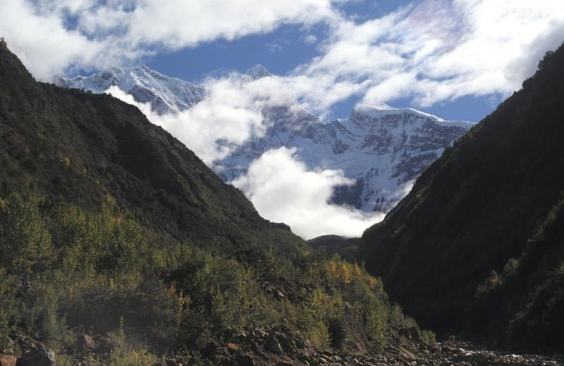 Drifting Tectonic Hotspot Overturns Himalayan Theory