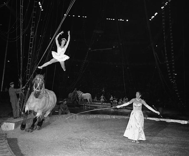 <p>When 17-year-old Ilonka Karoly steps into the circus ring, spectators wonder how one of her age and size can do all the things she does at one performance. Ilonka is a ballerina with the Ringling Bros. and Barnum and Bailey circus, May 12, 1956, in New York. (AP Photo/Robert Kradin) </p>