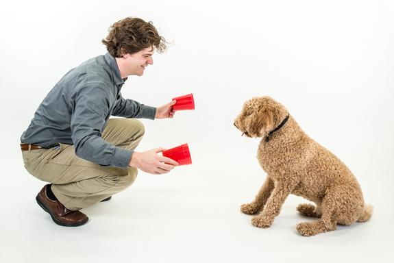 Dognition co-founder Brian Hare begins a dog-cognition testing game with a willing participant.