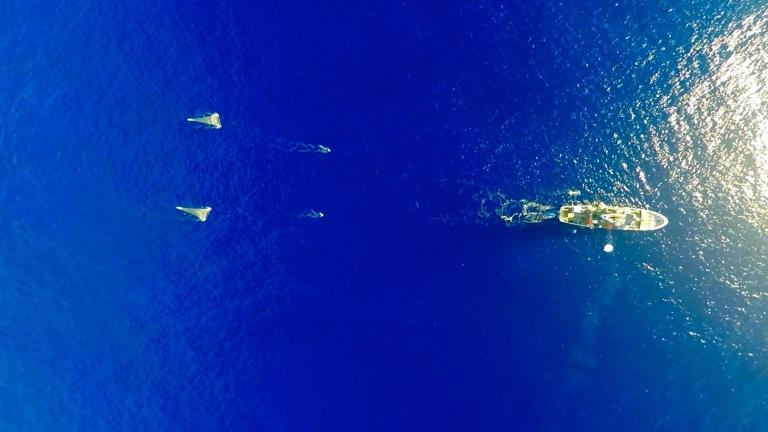 The Ocean Cleanup Foundation, which released this photo, hope to scoop up debris in the Pacific Ocean