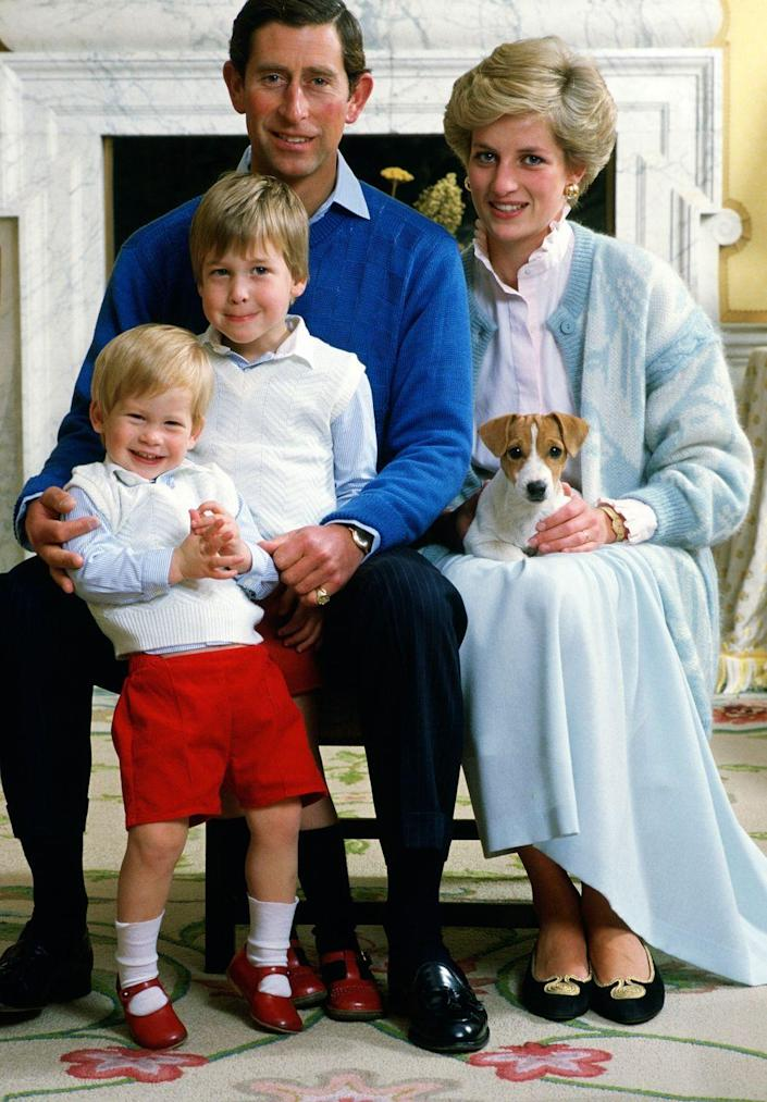 """<p>A cheeky Harry, 2, poses for a family photo with Prince William, Prince Charles, Princess Diana, and Tigga the dog at their home in Kensington Palace. In the HBO documentary, <em>Diana, Our Mother</em>, released ahead of the 20th anniversary of Diana's death in 2017, Harry said of his mother's wardrobe choices for the brothers, """"I genuinely think she got satisfaction out of dressing myself and William up in the most bizarre outfits—normally matching.""""</p>"""