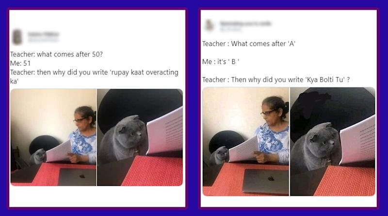 'Teacher: What Comes After...' is Latest Funny Memes Trend: Check Hilarious Jokes on Woman Showing Papers to Cat Meme Format