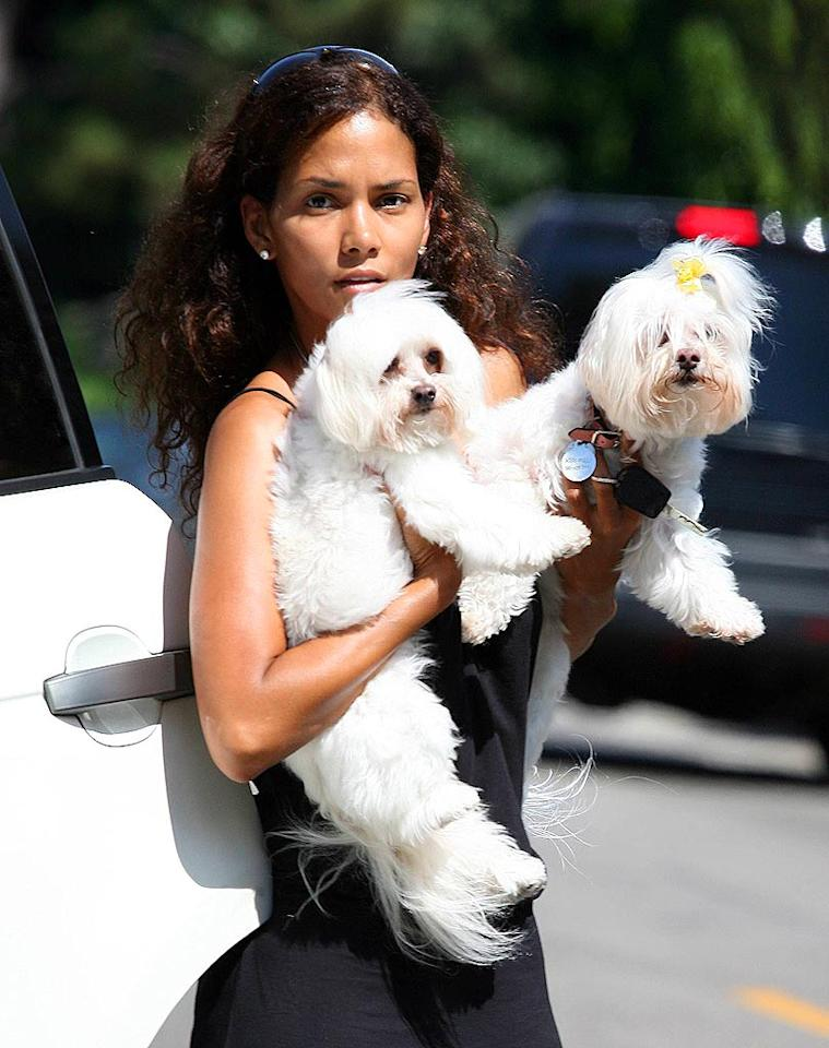 """Halle Berry has not one, but two fluffy white pooches. <a href=""""http://www.x17online.com"""" target=""""new"""">X17 Online</a> - July 22, 2006"""