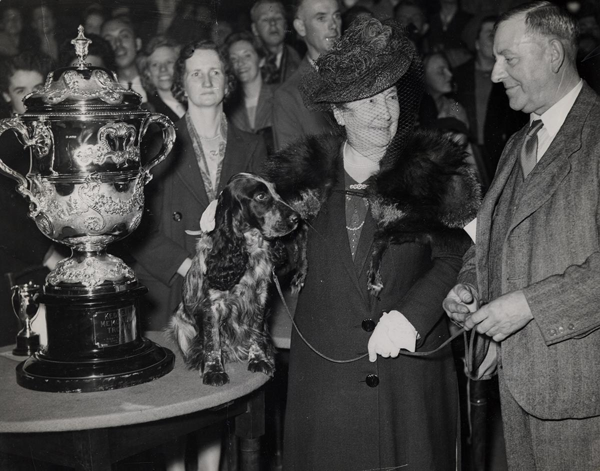 <p>Mrs Charles Cruft, widow of the founder of Crufts, presents the Supreme Championship Cup to Herbert Lloyd, owner of Coker Spaniel Tracey Witch. (ANL/Daily/REX/Shutterstock) </p>