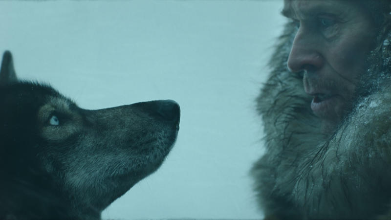 Willem Dafoe stars alongside a heroic sled dog in 'Togo'. (Credit: Disney+)