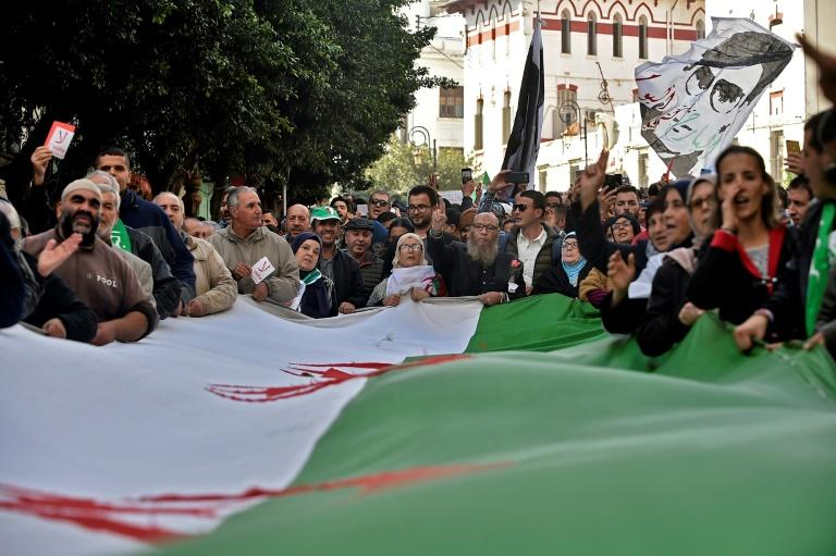 Algerians have also been protesting for greater political freedoms (AFP Photo/RYAD KRAMDI                         )