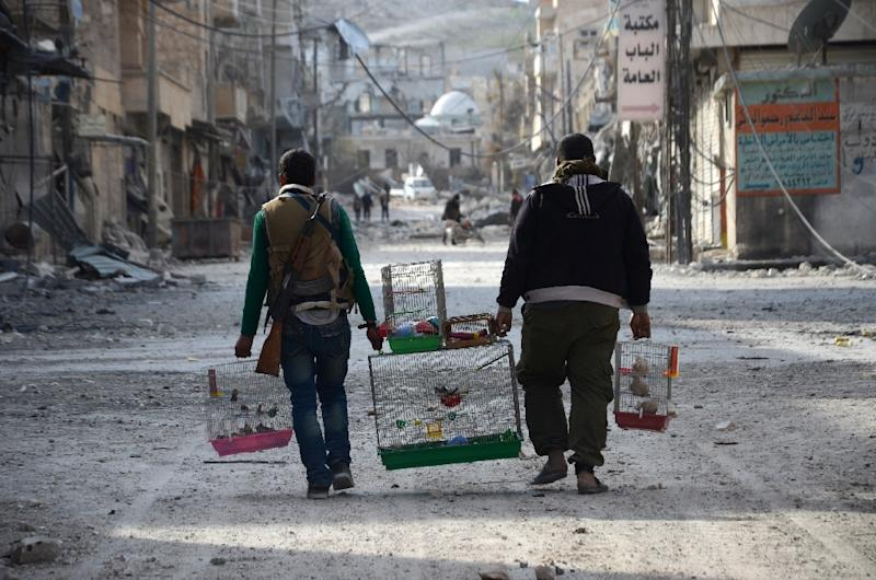 Syrian rebels carry birds in cages in the northwestern border town of al-Bab on February 24, 2017 (AFP Photo/Nazeer al-Khatib)