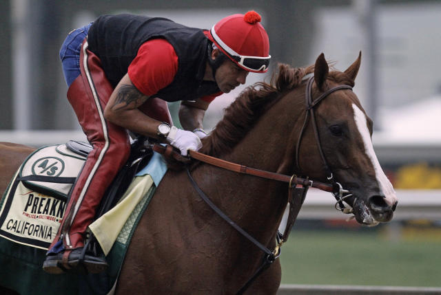 Exercise rider Willie Delgado gallops Kentucky Derby winner California Chrome at Pimlico Race Course in Baltimore, Md., Wednesday, May 14, 2014. The Preakness Stakes horse race is scheduled for May 17 at Pimlico. (AP Photo/Garry Jones)