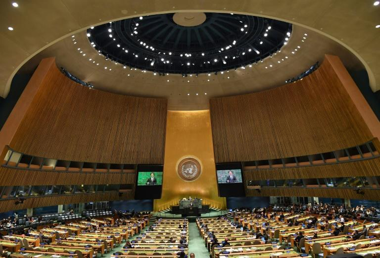 The UN General Assembly in September 2018, before the Covid-19 pandemic (AFP/Angela Weiss)