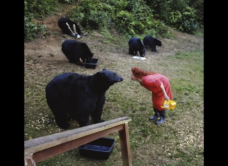In this undated file photo taken in Yachats, Ore., Karen Noyes feeds black bears outside her home. Noyes, who has lost a legal fight to feed black bears from her home on the Oregon coast, says she isn't returning to Oregon.