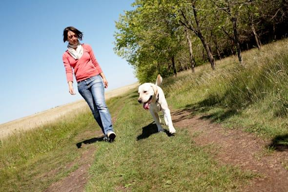 Photo of girl and labrador walking on the road