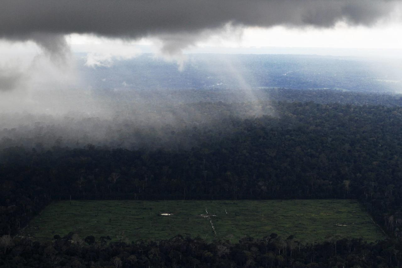 File photo of an aerial view of a tract of Amazon rainforest which has been cleared for agriculture near Santarem