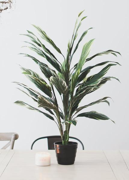 """<p>afloral.com</p><p><strong>$68.00</strong></p><p><a href=""""https://www.afloral.com/products/artificial-potted-cordyline-palm-floor-house-plant-40-tall"""" rel=""""nofollow noopener"""" target=""""_blank"""" data-ylk=""""slk:Shop Now"""" class=""""link rapid-noclick-resp"""">Shop Now</a></p><p>If you're after a floor plant that isn't too tall, this cordyline fits the bill. And if you decide you want it to take up a bit more space, display it on a plant stand.</p>"""