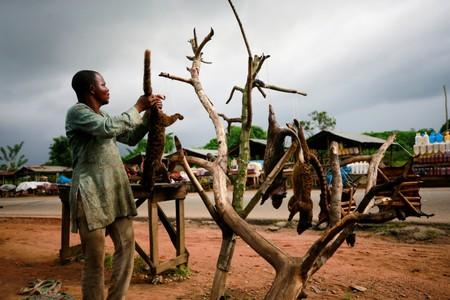 A bushmeat seller arranges fresh catches for display on a tree at a market in Emure-ile along Owo-Akure road in Ondo