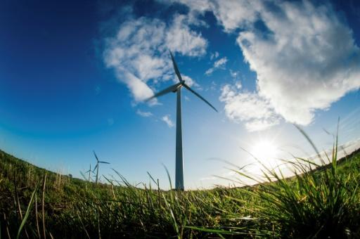 <p>Fossil fuels blown away by wind in cost terms: study</p>