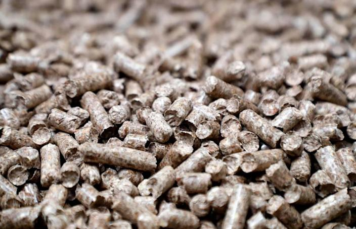 Wood pellets like these are produced by pellet plants in the Carolinas.