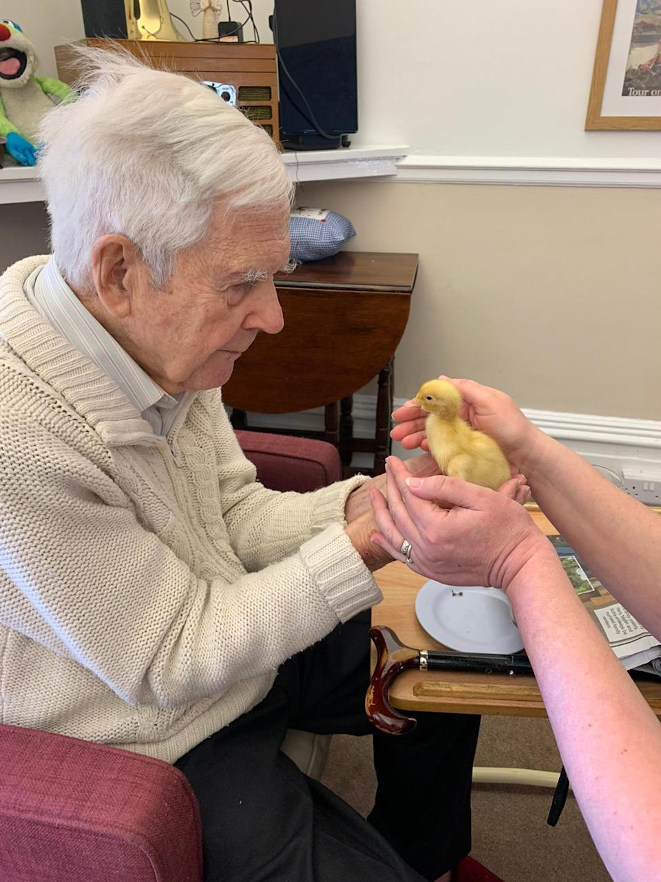 Michael Vaughan (95) with a chick