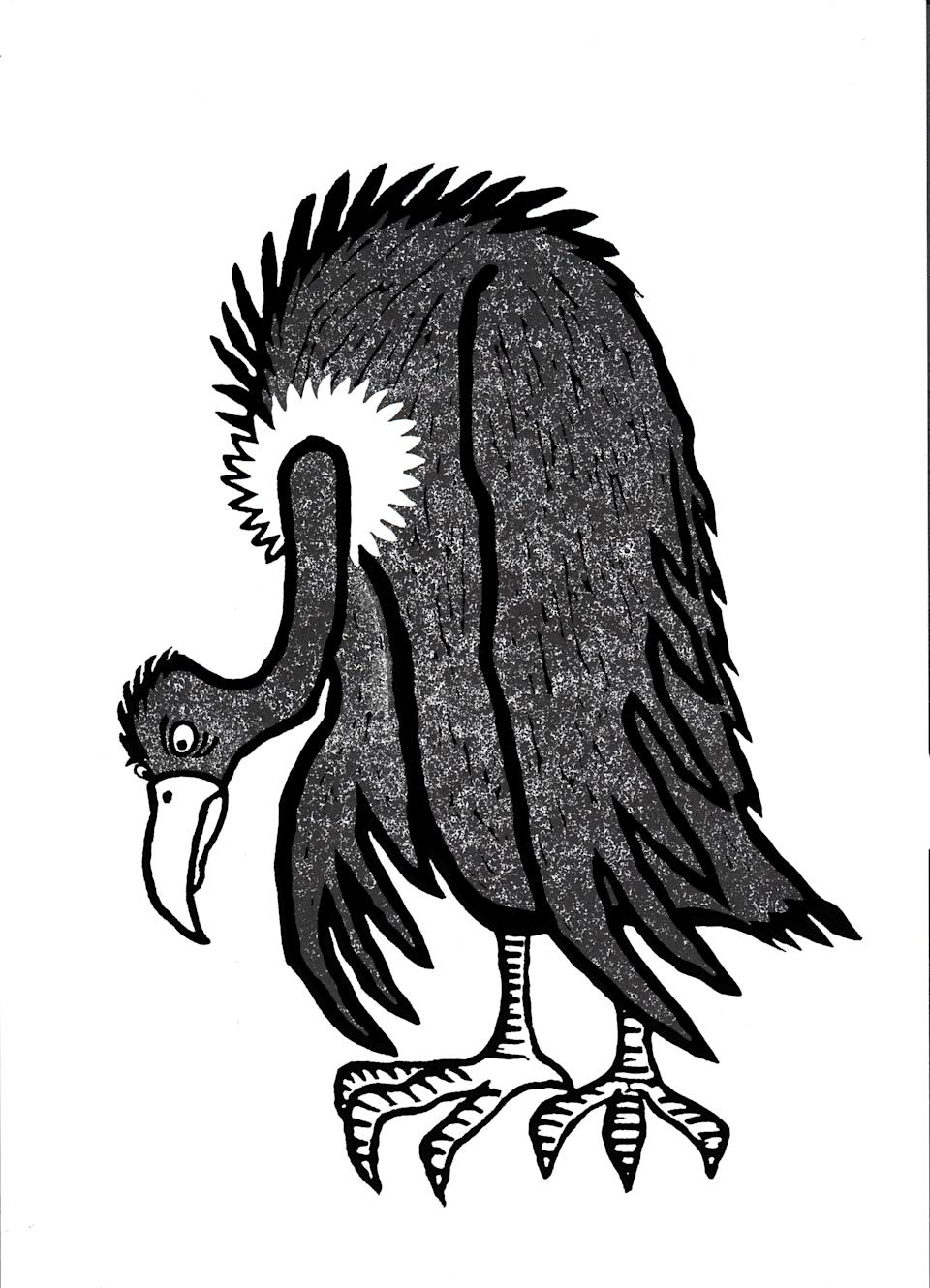 An illustration by illustrator Patrick Kennedy shows a vulture in We Belong's Mental Health Check report.Patrick Kennedy