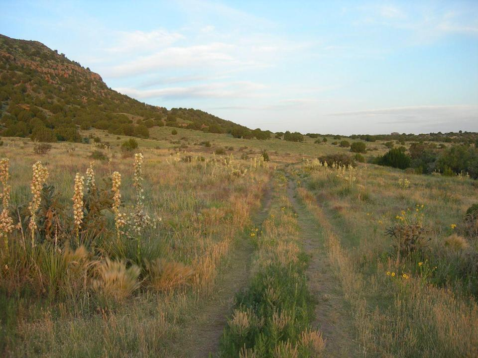 """<p>It's hard to believe that 30 million years ago, Oklahoma's <a href=""""https://www.tripadvisor.com/Attraction_Review-g51443-d3668199-Reviews-Black_Mesa_Summit_Trail-Kenton_Oklahoma.html"""" rel=""""nofollow noopener"""" target=""""_blank"""" data-ylk=""""slk:Black Mesa Summit Trail"""" class=""""link rapid-noclick-resp"""">Black Mesa Summit Trail</a> was covered in a layer of black lava rock. Today, it's a 4.2-mile hike that reaches the highest point in Oklahoma and is thought of as a bird-watcher's utopia.</p><p><br><a class=""""link rapid-noclick-resp"""" href=""""https://go.redirectingat.com?id=74968X1596630&url=https%3A%2F%2Fwww.tripadvisor.com%2FAttraction_Review-g51443-d3668199-Reviews-Black_Mesa_Summit_Trail-Kenton_Oklahoma.html&sref=https%3A%2F%2Fwww.countryliving.com%2Flife%2Ftravel%2Fg24487731%2Fbest-hikes-in-the-us%2F"""" rel=""""nofollow noopener"""" target=""""_blank"""" data-ylk=""""slk:PLAN YOUR HIKE"""">PLAN YOUR HIKE</a></p>"""