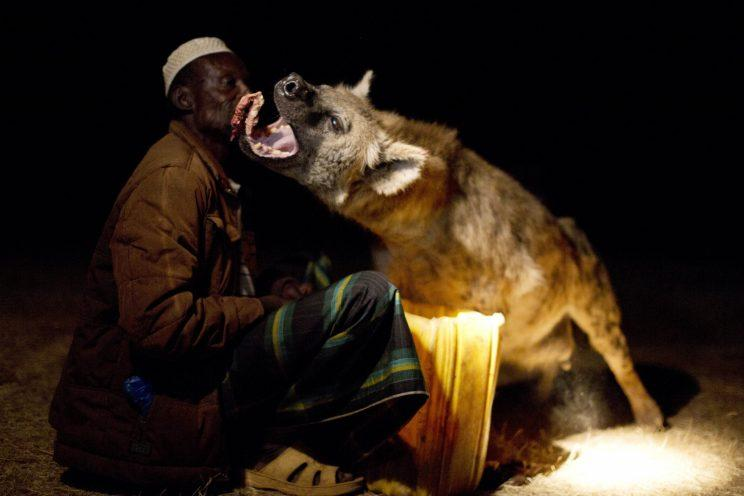 In Harar, Ethiopia, a man calls wild hyenas to his house and feeds them by hand