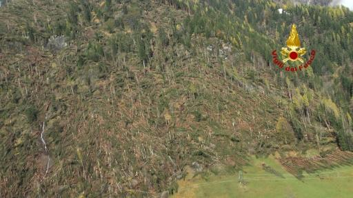 Killer storms have flattened forests in Italy's north